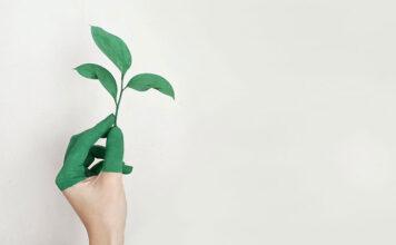 Dlaczego warto studiować Ochronę Środowiska